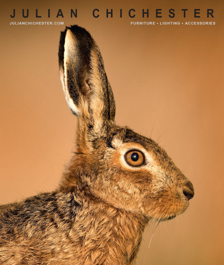 JC-2017-Hare-Cover