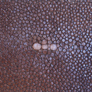 Faux Shagreen Brown (FSB)